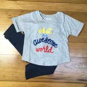 NWT Gymboree Girls T-shirt and Jegging